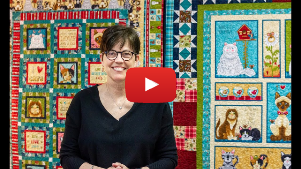 Live Love Meow Quilts & Fabric Overview